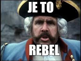 Rebel Meme - the rebellion of a base jumper he did get arrested after he landed