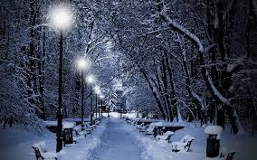 winter park christmas lights nature white night snow snowflakes winter lights christmas snowing