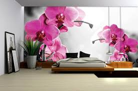 radiant orchideen im schlafzimmer orchideen im schlafzimmer