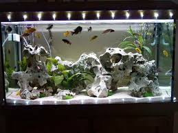 aquarium decorations http monpts some consideration