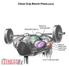 Reverse Grip Bench Press Upper Chest Revolutionize Your Chest And Arms With Close Grip Barbell Bench