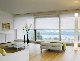 Kitchen Window Blinds And Shades - 38 best roll into new style with roller shades images on pinterest