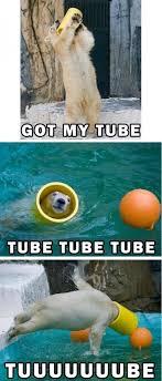 Tube Meme - tube meme by njwelch1998 memedroid