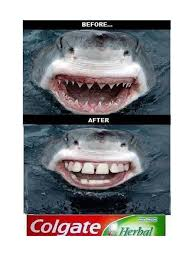 Toothpaste Meme - the magic of toothpaste y so serious