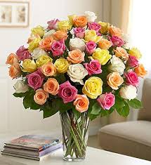 Multi Colored Roses Dill U0027s Ultimate Long Stemmed Multi Colored 48 Rose Bouquet