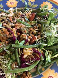 cuisine crudivore la salade du crudivore simplement cru