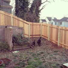 Backyard Wall Backyard Fence For Dogs Home Outdoor Decoration