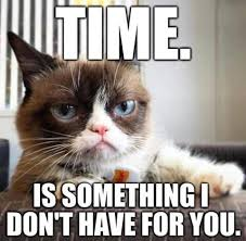 Angry Cat Meme - 20 laughable angry cat meme sayingimages com