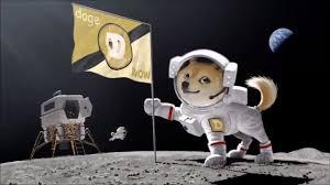 Dogecoin Meme - dogecoin to the moon meme coin rising youtube