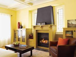 put out fire in fireplace interior design