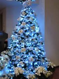 baby blue tree decorated with white poinsettias flowers