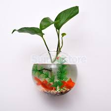 Hanging Glass Wall Vase 15cm Clear Ball Shape Glass Wall Hanging Flower Vase Plant Bottle