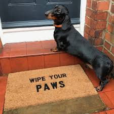Wipe Your Paws Mat Decorative Wipe Your Paws U0027 Doormat By More Than Words Notonthehighstreet Com