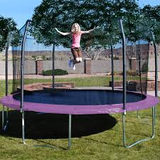 fascinating tips for trampoline with enclosure u2014 steveb interior