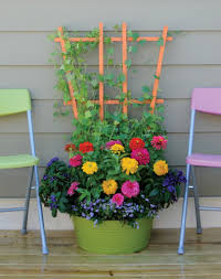 dare to plant some vegetables with your flowers in the garden or