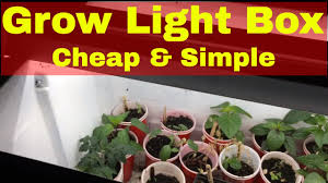 what is the best lighting for growing indoor diy grow light setup for indoor gardening cheap and simple