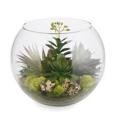 44 best glass bowl terrariums images on pinterest plants