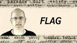 What Does A Flag Mean What Does Flag Mean English Word Definition Youtube