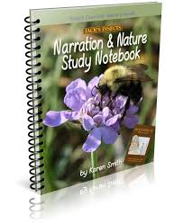 jack u0027s insects narration u0026 nature study notebook student the o