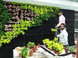 vertical gardens vertical garden vertical garden mauli hitech nursery pune id