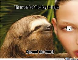 Cute Sloth Meme - oh look at the cute sloth by lump meme center