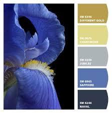 86 best paint color schemes cobalt blue from the flirt color group