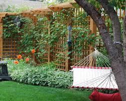 Diy Garden Trellis Ideas Download Privacy Trellis Ideas Solidaria Garden
