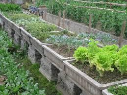 ideas planting garden vegetables landscaping u0026 backyards ideas