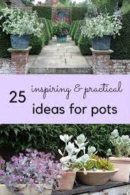 love your pots 25 inspiring u0026 practical ideas for container