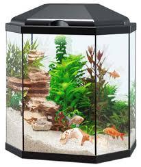 30 led aquarium light ciano ciano aqua 30 led light black shirley aquatics