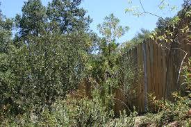 native plant nursery santa cruz garden tour 2015 the ojai rambler