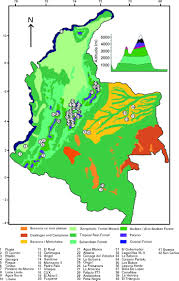 Colombian Map Mid To Late Holocene Pollen Based Biome Reconstructions For