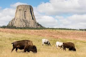 South Dakota landscapes images Yellowstone landscape wp3 photography jpg