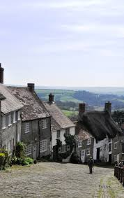 local area of shaftesbury