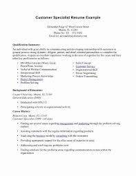 resume templates customer service resume summary exles for customer service best of exle resume