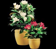Silk Flower Plants - artificial flowering magnolia plants silk flowering plants