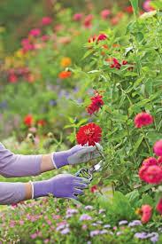 nitrile gloves for gardening garden gloves gardeners com