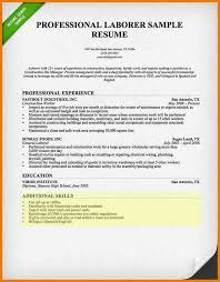Sample Resume With Skills Section by 7 Computer Skills Cv Postal Carrier