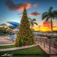 christmas tree natick ma christmas lights decoration