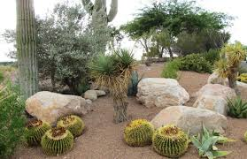 Desert Landscape Ideas For Backyards by Garden Design Garden Design With Rock Landscaping On Pinterest
