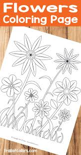 flower coloring page for adults trail of colors