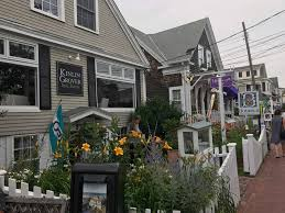 cape cod hyannis and provincetown lucky bug adventures