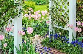 Garden Path Ideas 75 Garden Path Ideas And Designs Pictures