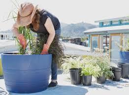 diy cobalt blue planters houseboat optional gardenista