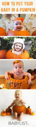 party city halloween treat bags best 20 baby halloween ideas on pinterest funny baby halloween