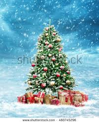 beautiful decorated snowed christmas tree cold stock photo