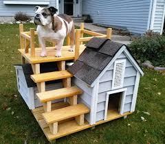 cool dog houses 12 lovable outdoor dog houses rilane