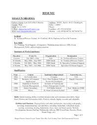 sle resume format for freshers pdf creator make online resume for fresher krida info