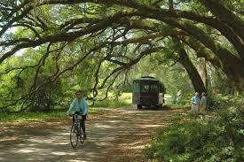 South Carolina nature activities images These 15 outdoor activities in south carolina are totally free jpg