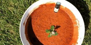 huile essentielle cuisine mousse au chocolat à l huile essentielle de menthe des chs